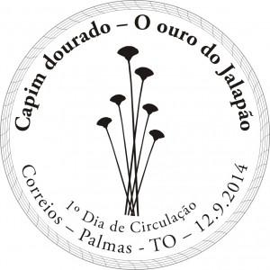capim_dourado_jalapao